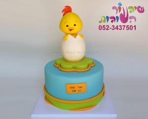 עוגת האפרוח לולי 1