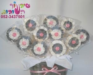 עציץ עוגיות פרחים ענק נסיכות דיסני סוכריות לקאפקייקס דרדסים