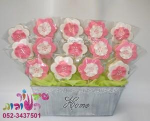 עציץ עוגיות פרחים ענק