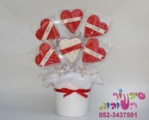 עציץ עוגיות לב
