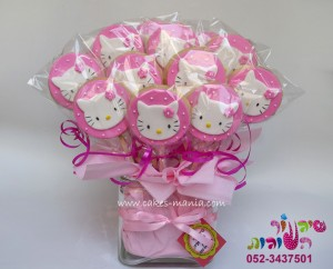 עציץ עוגיות הלו קיטי