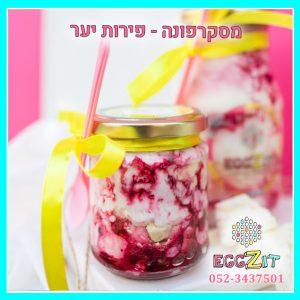 צנצנת קינוח גלידה - מסקרפונה פירות יער